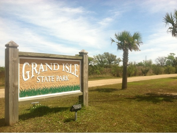 Grand Isle State Park is at the very end of the island and is great for camping and bird watching!