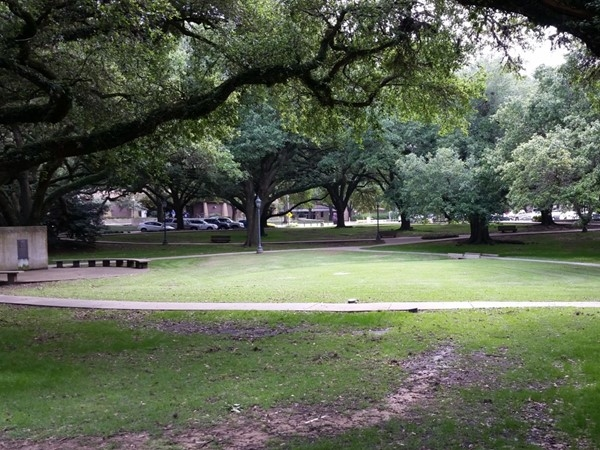 Outside area behind LSU's Student Union
