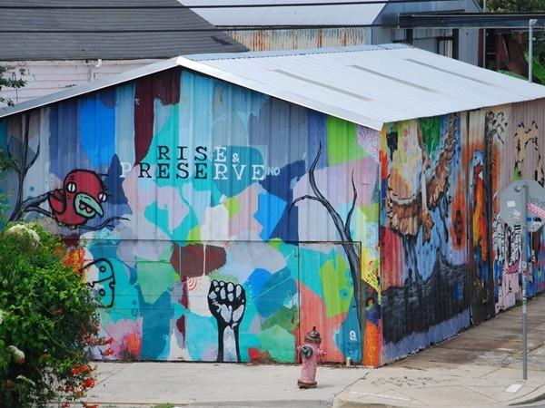 Rise & Preserve mural