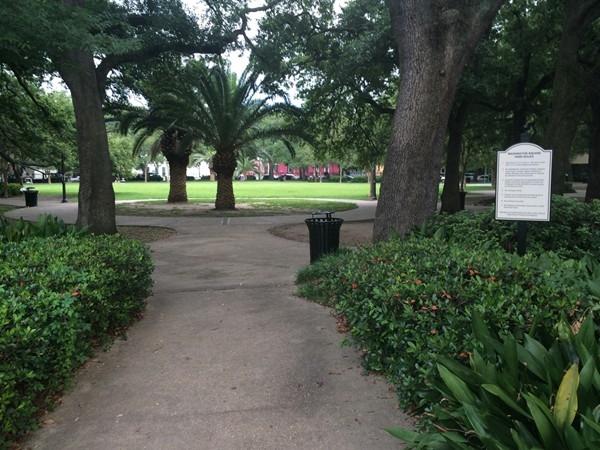 Washington Square Park on Frenchman Street