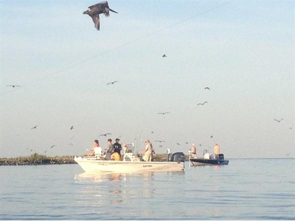 Great fishing in Grand Isle