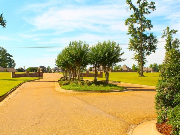 With a gorgeous entryway, Dozier Creek offers amazing views of Lake D'Arbonne