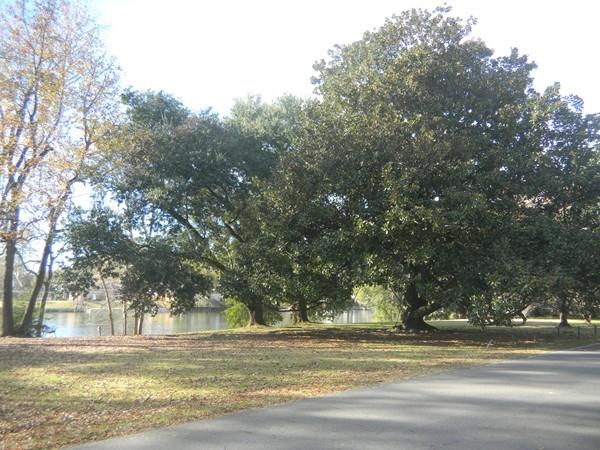 Phillips Bayou on prestigious Island Drive