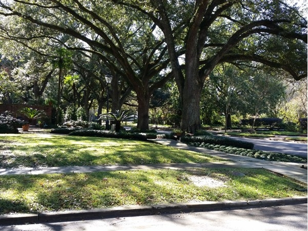 Great corner lot in the Garden District