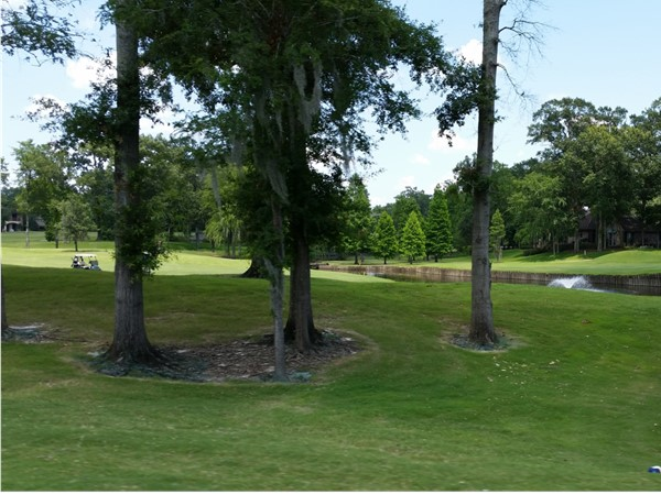 Picturesque golf course and grounds in the Country Club of Louisiana