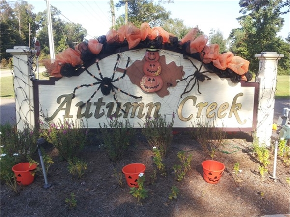 Ready for Halloween 2015!  Autumn Creek Subdivision