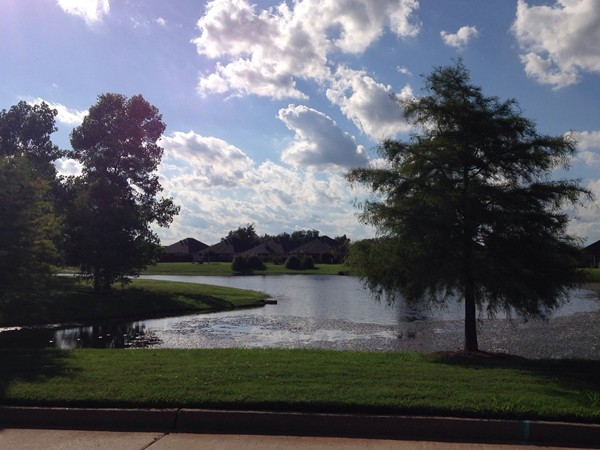 The Legacy Lake