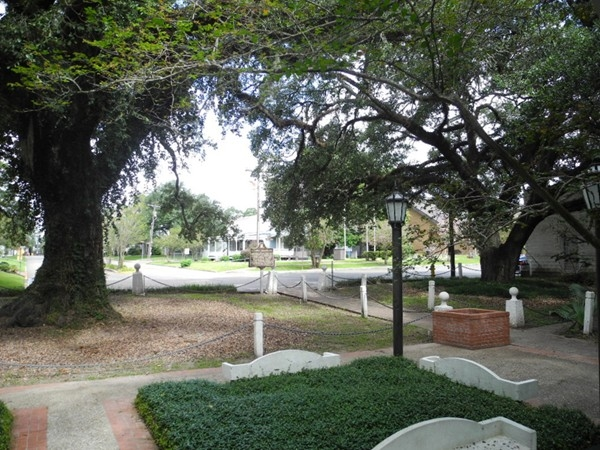 Evangeline Oak Park