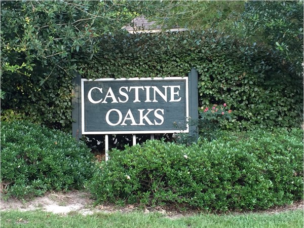 Castine Oaks in Mandeville. Intimate ten property subdivision just ten minuets from the Causeway