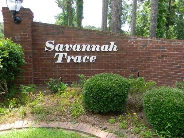 Savannah Trace boasts a bright feel