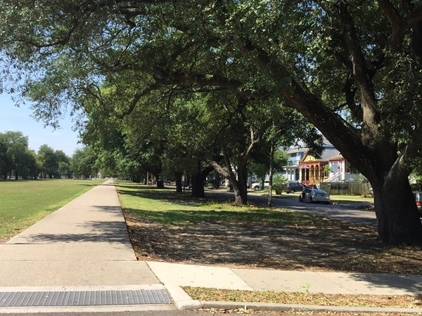 Lined with oak trees and a main artery, S. Jefferson Davis Parkway also has a bike path