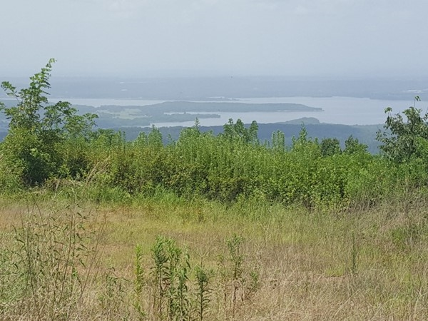 Lake Dardanelle as viewed from Logan County side of Spring Mountain. Great cabin spots