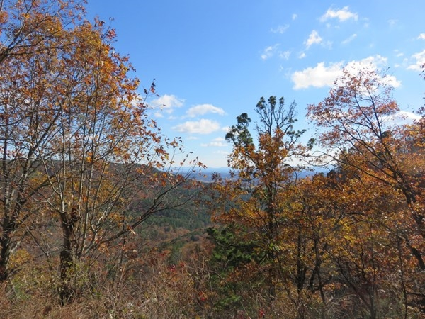 Fall in love with these views of Johnson County