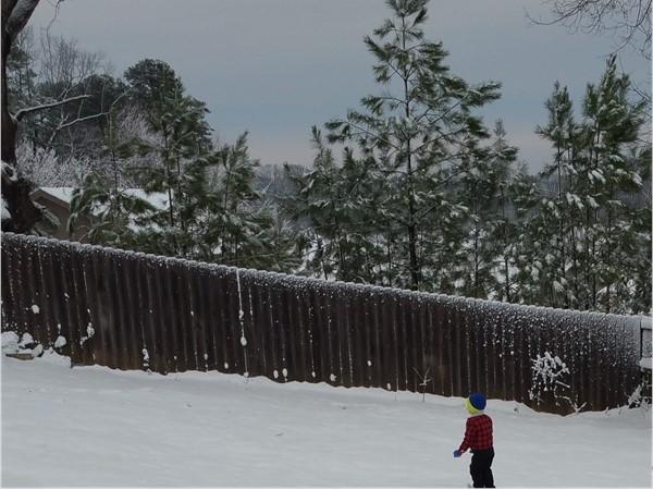 Snowy sceen in Benton. It doesn't snow every winter in Arkansas, but we enjoy it when it does
