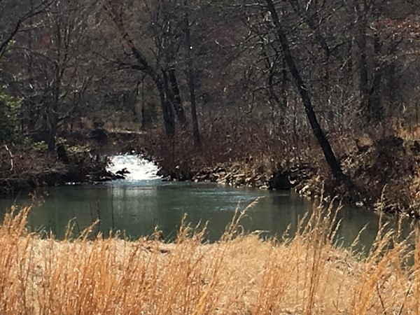 A stream, waterfall, and a swimming hole can be found on some wonderful property in the area