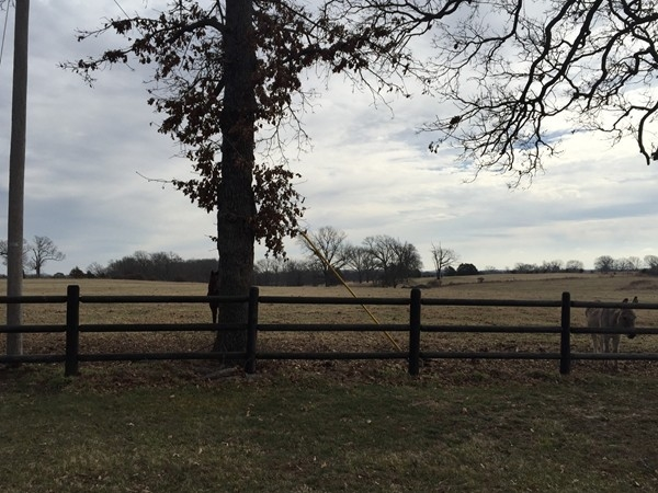 If you're looking for some peace and quiet, and a little acreage, Pea Ridge is the place to be
