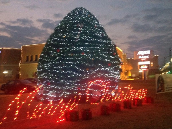 Arvest Bank downtown decorated Christmas Tree