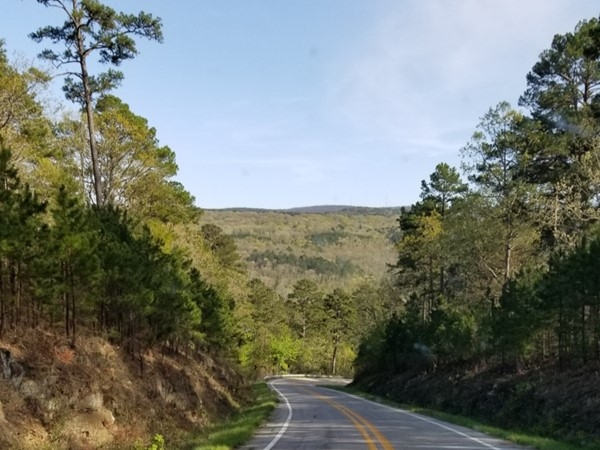 It was a beautiful day for a drive. Here, I'm north of Hector coming back from Witt Spring
