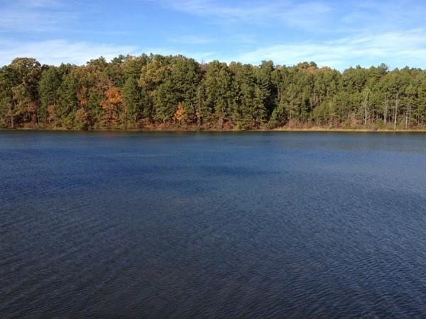 Pretty fall colors near Conway
