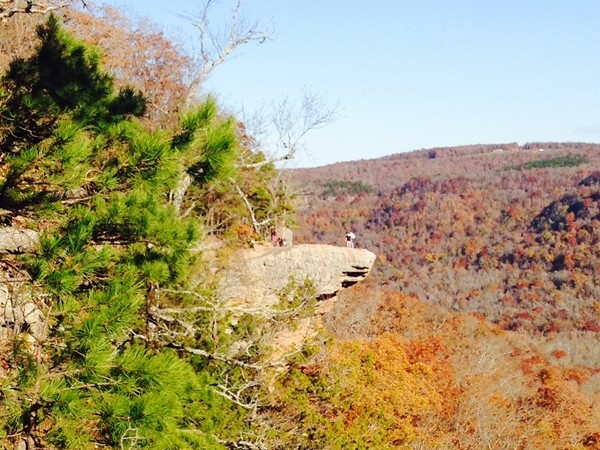 Whitaker Point Trail aka Hawksbill Crag. Beautiful place to enjoy the fall colors