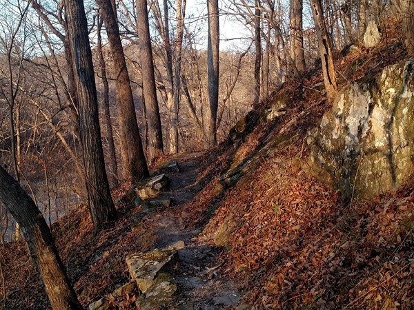Inclining trail at Pruitt with a winter view of the Buffalo National River