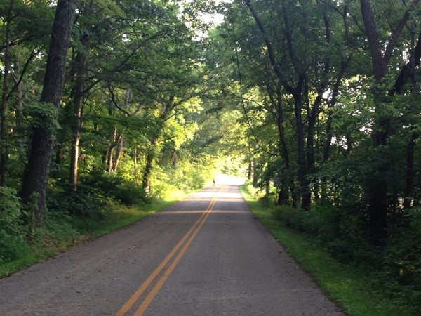 Pea Ridge National Military Park has an amazing trail that you can enjoy while biking or running