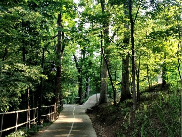 Summertime is a great time of year to explore the trails at Crystal Bridges