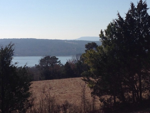 Backyard view from a home in Russellville