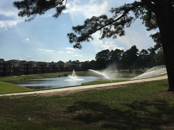 Beautiful fountain and golf course between The Greens Apartments and Longhills Village subdivision.