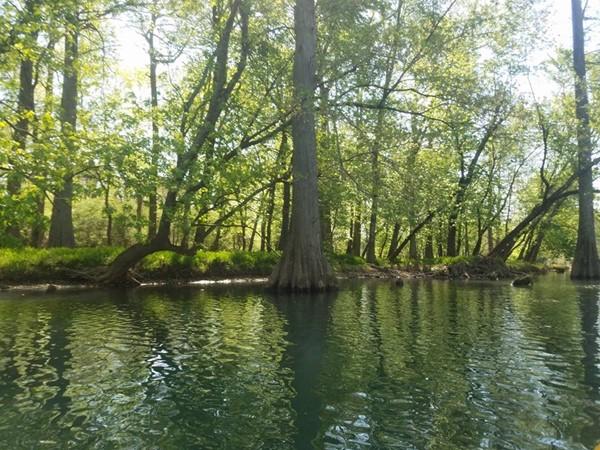 Little Maumelle River in Little Rock