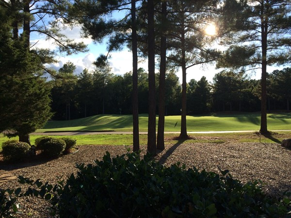 Beautiful view of the #4 green on Isabella Golf Course