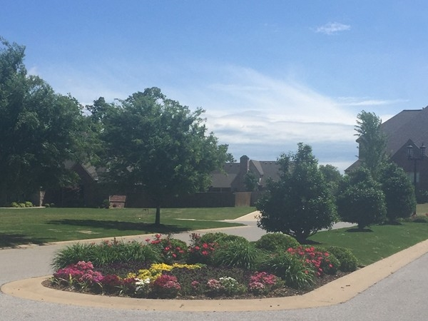 Gorgeous flower beds as you enter Ridgewood subdivision in Cave Springs