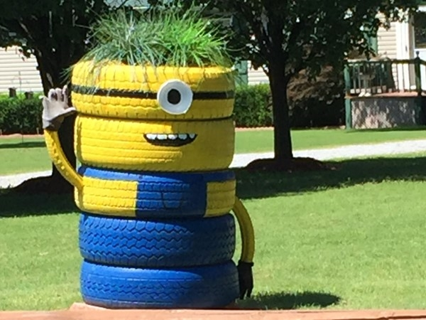 A unique minion in Rogers