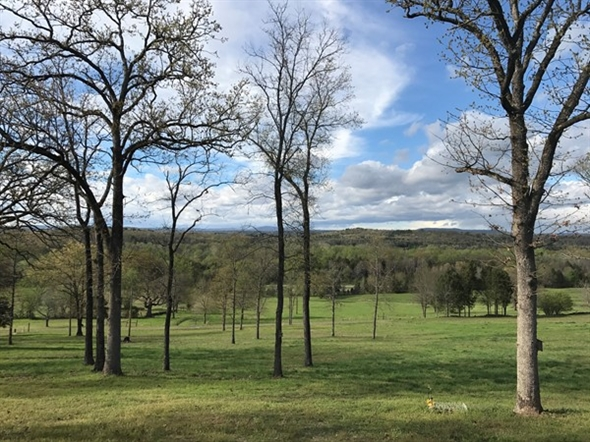 Spring in the Arkansas River Valley