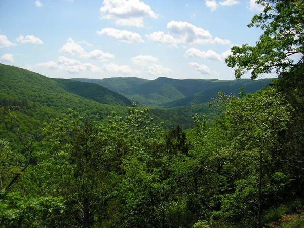 Scenic views along Highway 43 near Harrison