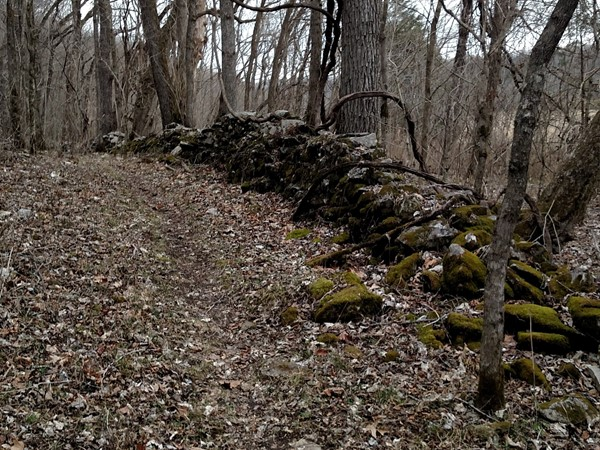 Rock wall along the River View Trail in Tyler Bend. Wonder what it looked like years ago?
