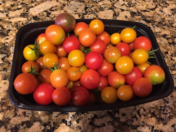 We have beautiful weather to grow yummy tomatoes