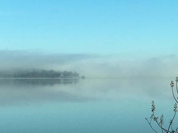 A foggy morning on Lake Dardanelle