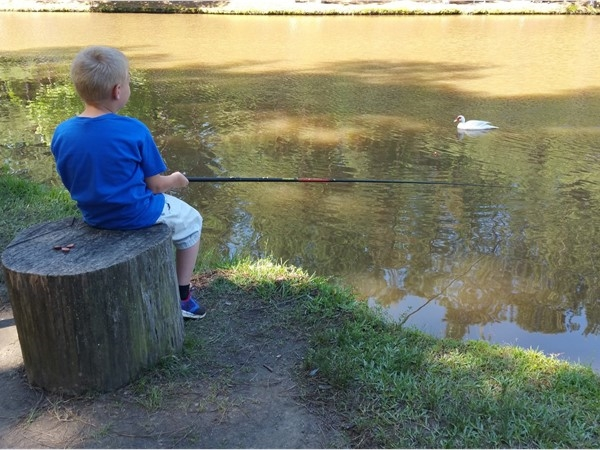 Fishing for a large bass with an old wooden pole at the Family Farm in Malvern