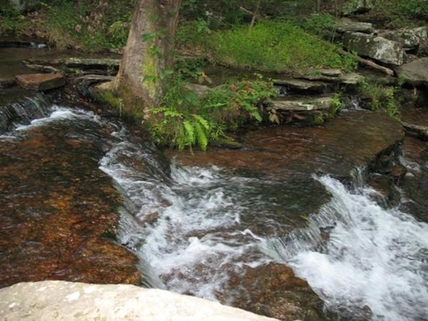 Cool, clear water in Collins Creek - Heber Springs