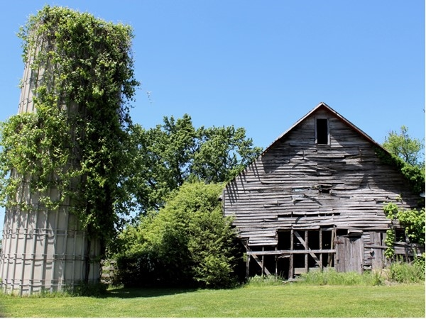 Old silo and barn off the beaten path in Rogers