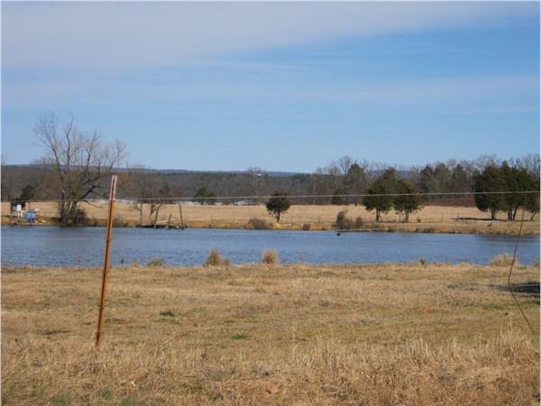 Peach orchard irrigation pond