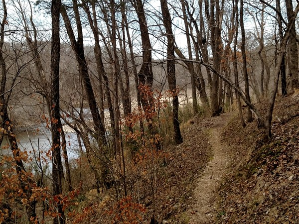 The lovely colors of winter - hike at Tyler Bend, Searcy County