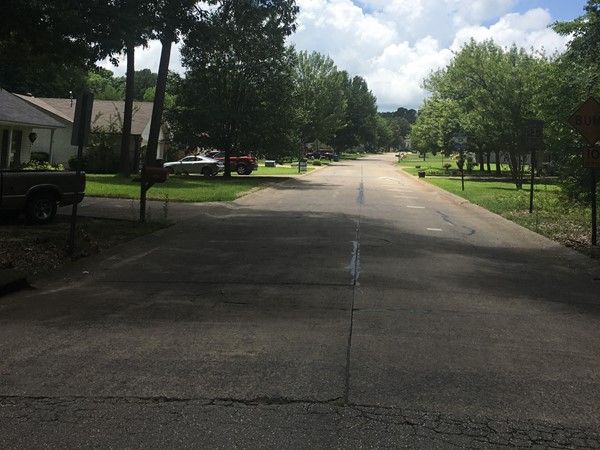 Timbermist Subdivision is close to main roads in Benton and has very affordable homes