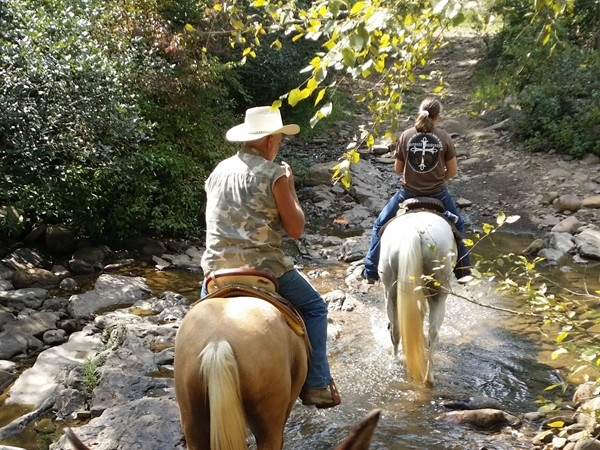 Trail riding from Lonesome D Horse & RV Camp: ride from your camp into a beautiful national forest
