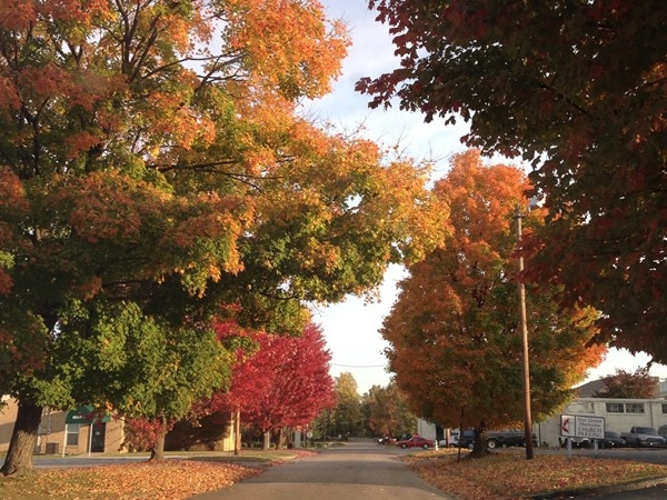 Gorgeous fall view on 3rd Street, Downtown Rogers