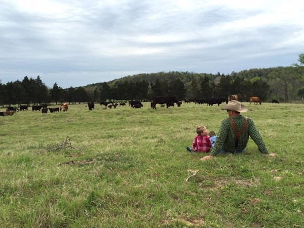 Cattle farmer and daughter watching the grazing of beef cattle