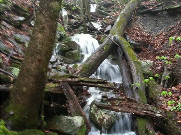 Waterfall views at Spy Rock Falls near Ozark