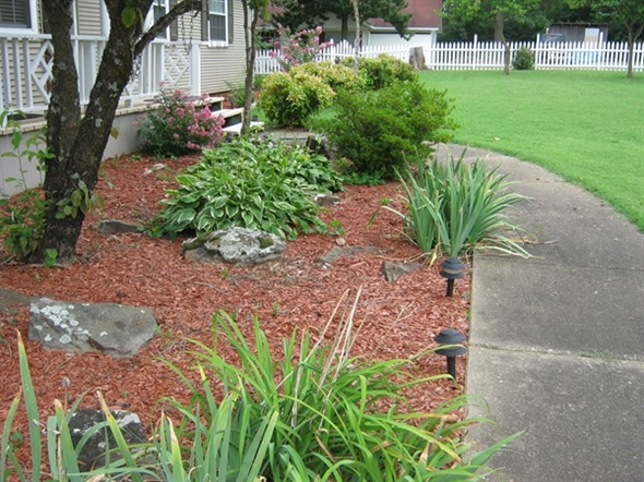 Beautiful landscaping. Rainy days keep the plants green and gorgeous