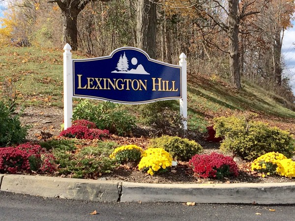 Welcome to Lexington Hill in Harriman